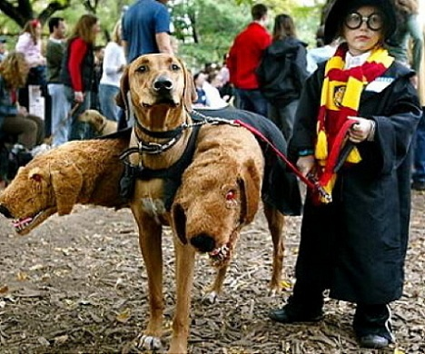 disfraz-halloween-nino-casero-harry-potter